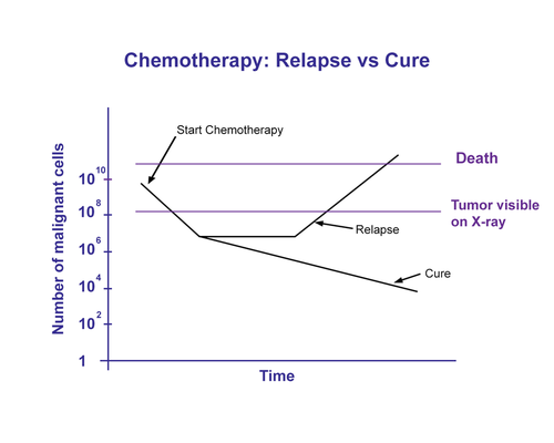 Drug resistance in chemotherapy treatment